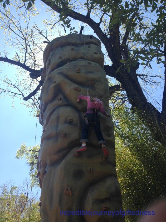 Fort Worth Zoo Homeschool Day - Rock Climbing