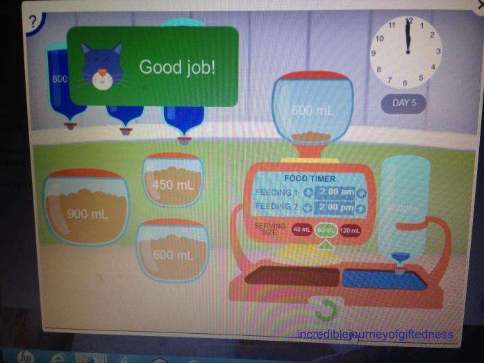Redbird Advanced Mathmatics Grade 3-3