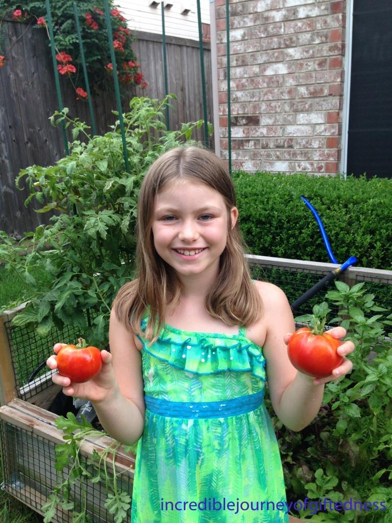Madison's Garden